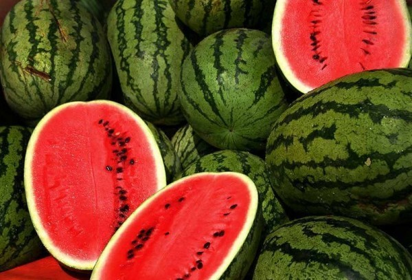 800px-watermelons