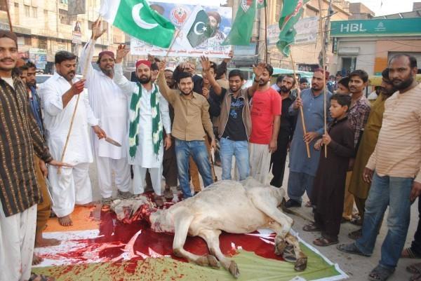 سنی تحریک کے افراد نے نعرہ رسالت یارسول اللہ کی صداؤں میں گائے ذبح کی ۔