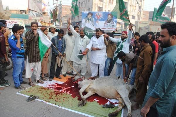 اس موقع پر سنی تحریک کے رہ نماؤں کا کہنا تھا کہ انہوں نے گائے ذبح کر کے بھارت کو پیغام دیا ہے کہ وہ مسلمانوں پر گائے ذبح کرنے کی پابندی نہیں لگا سکتا ۔