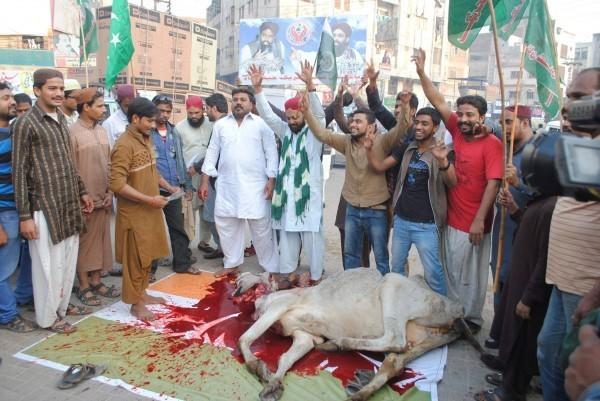 سنی تحریک نے حیدر آباد میں بھارتی جھنڈا والے پینا فلیکس زمین پر رکھ کر اس پہ گائے ذبح کی ۔