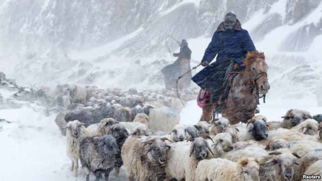مشرقی ایشیا میں شدید سردی کے باعث 90 افراد ہلاک