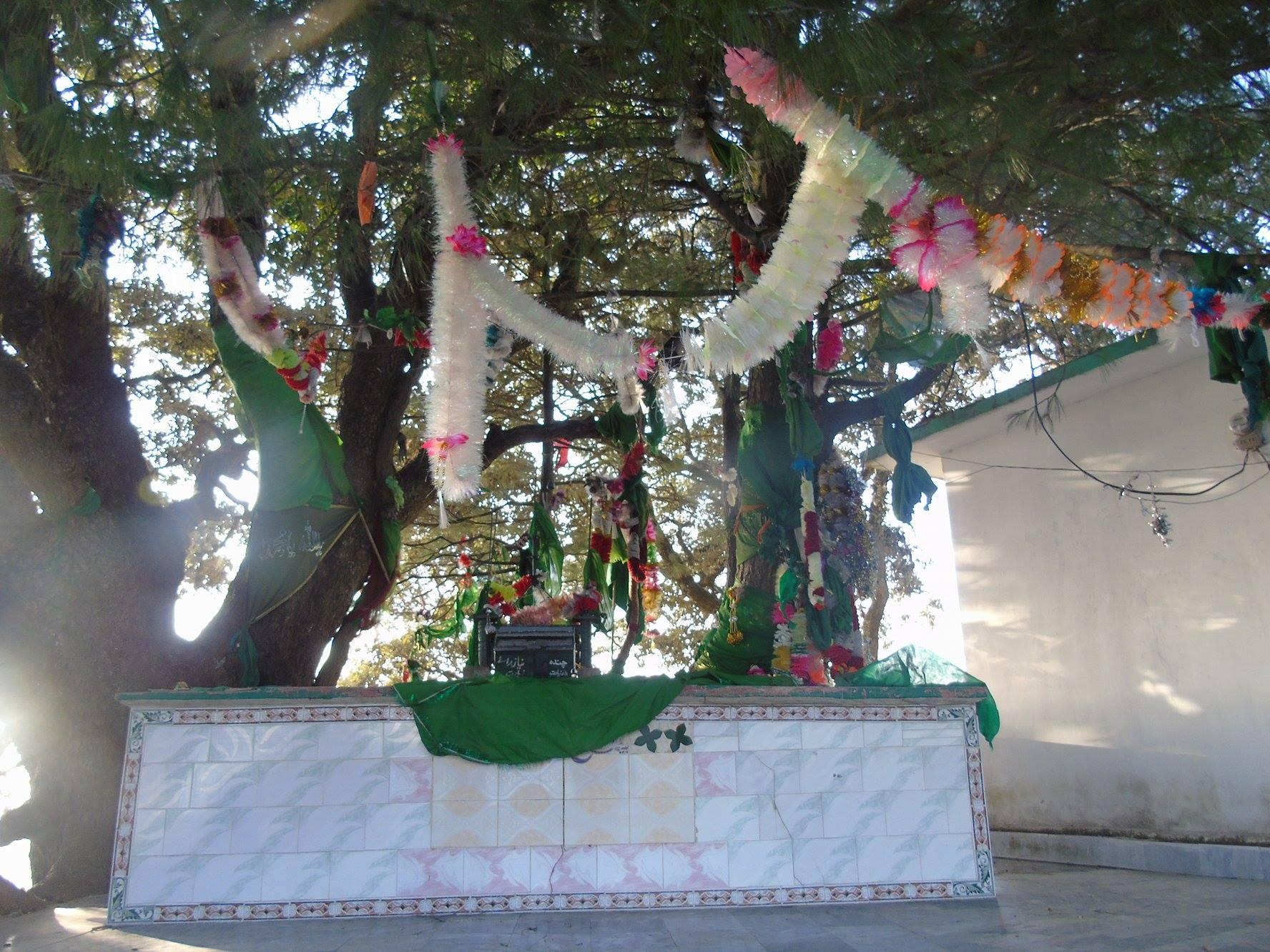 پنج پیر کی چٹانیں اور محبّت کا عالمی دن