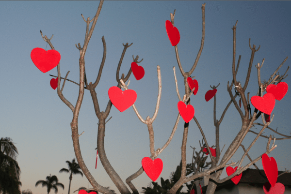 طاہر شاہ نے ویلنٹائن ڈے پر خصوصی گانا تیار کر لیا