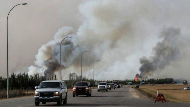 فضائی آلودگی انسانی ہڈیوں کو کمزور کررہی ہے