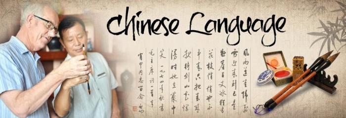 چینی زبان و ادب: مستبقل کے مستحکم ترقیاتی عوامل کی نشاندہی