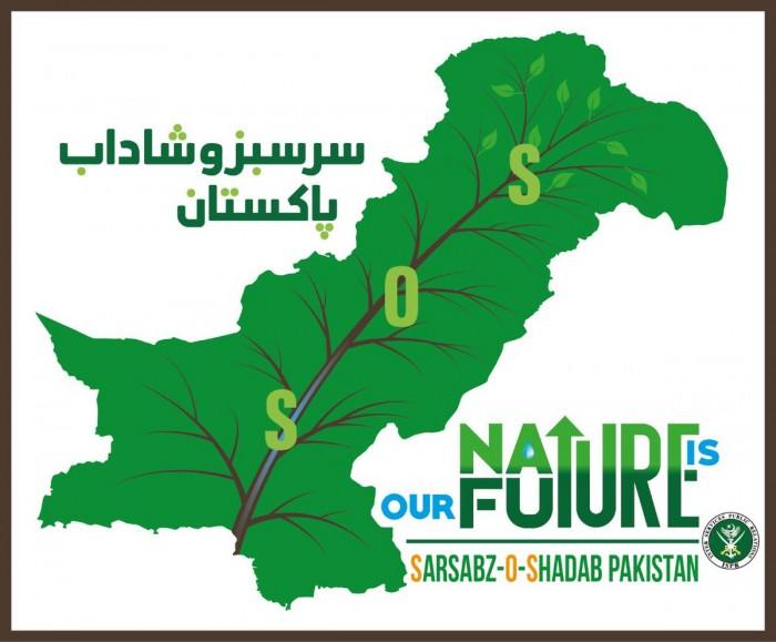 پاکستان میں جنگلات کی خوفناک حد تک کمی:یوم آزادی کے موقع پر زبردست شجرکاری مہم