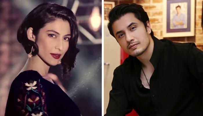 میشا شفیع نے مجھے ذاتی مفاد کیلئے ٹارگٹ کیا: علی ظفر