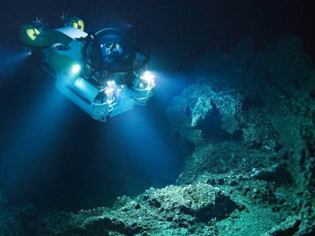 سمندر کی گہرائی میں تیل کھانے والے بیکٹیریا دریافت