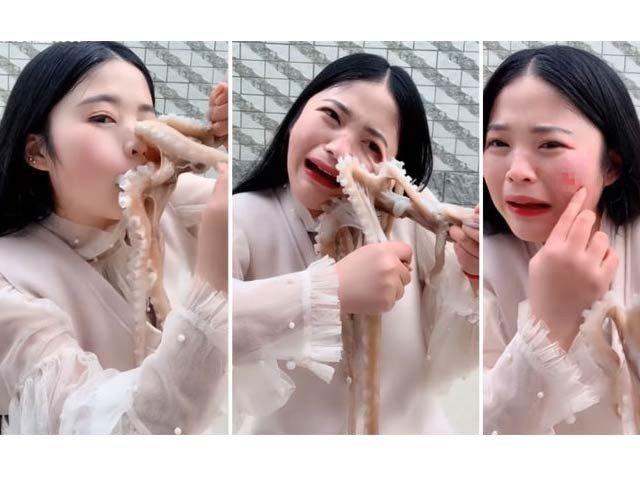 چینی خاتون کا کیمرے کے سامنے زندہ آکٹوپس کھانا ایک عذاب بن گیا