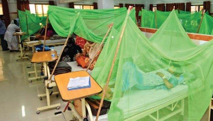 کراچی میں 20 روز کے دوران 186 افراد ڈینگی بخار میں مبتلا