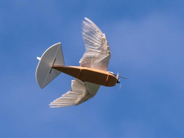 سائنس دان فضا میں اُڑنے والے 'کبوتر روبوٹ' بنانے میں کامیاب