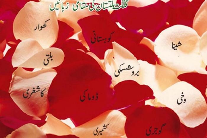 کیا گلگت بلتستان کی مقامی زبانیں معدوم ہو رہی ہیں؟