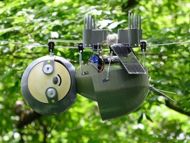 ماحول اور فطرت پر نظر رکھنے والا 'سلاتھ روبوٹ'