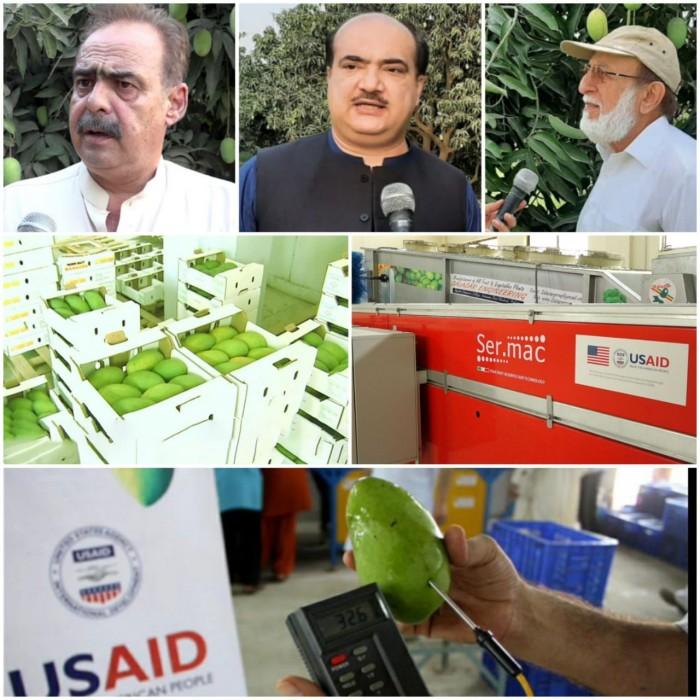 یو ایس اے آئی ڈی کے تعاون سے پاکستان میں آم کی صنعت کا فروغ